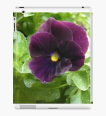 Purple Annual iPad Case/Skin