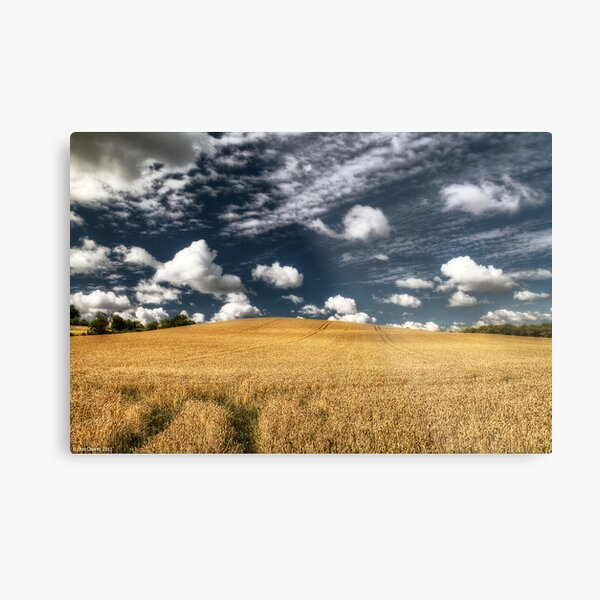 not uncropped? Metal Print