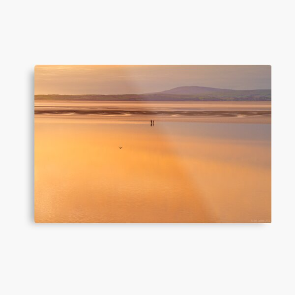 are you sure that this is where we parked the car? Metal Print