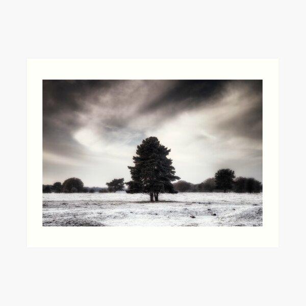 Winter in Elveden Art Print