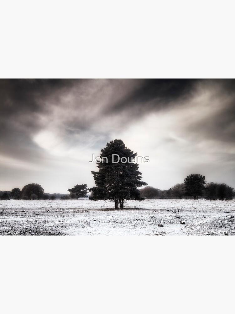 Winter in Elveden by jondowns