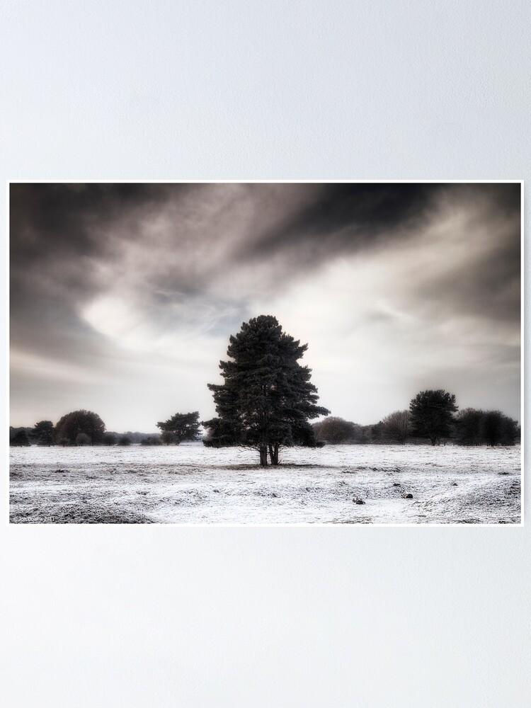 Alternate view of Winter in Elveden Poster