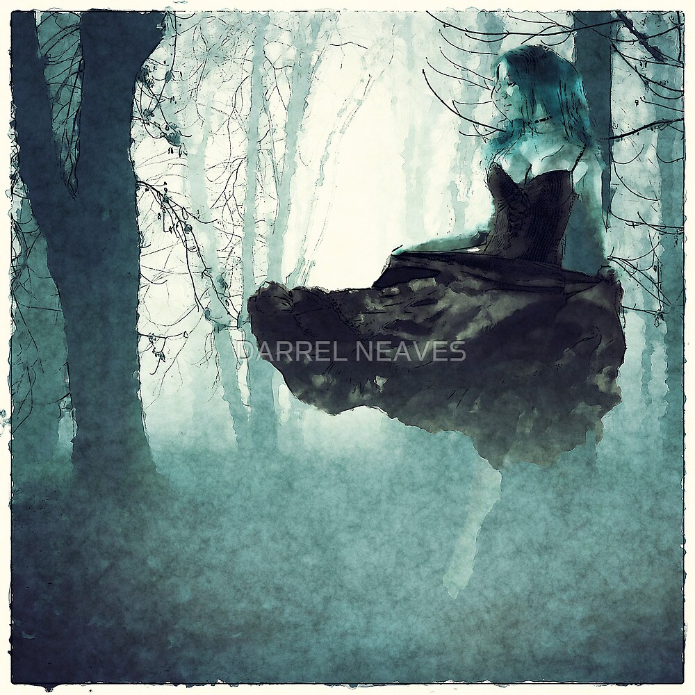 forest dancer by DARREL NEAVES