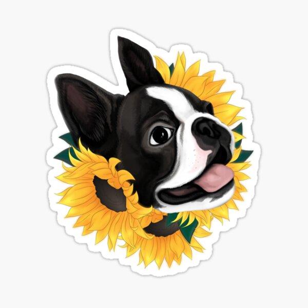 Boston Terrier Sunflower  Sticker