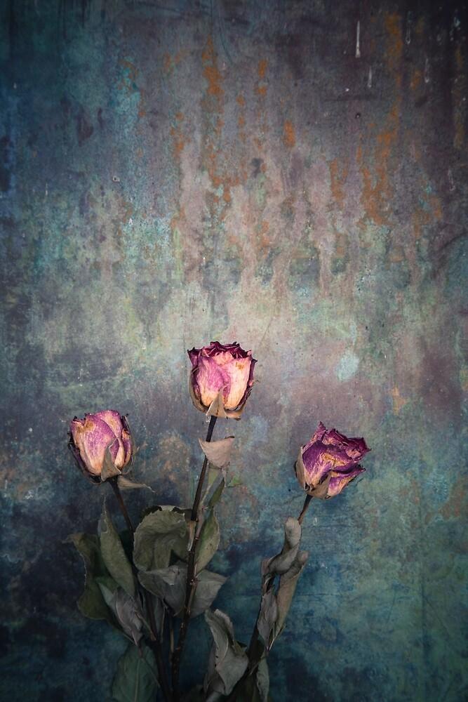 Three Roses  by Maria Heyens