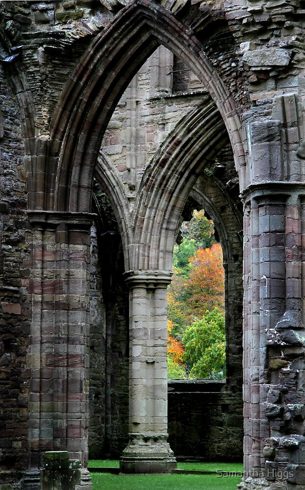 Autumn View - Tintern Abbey by Samantha Higgs
