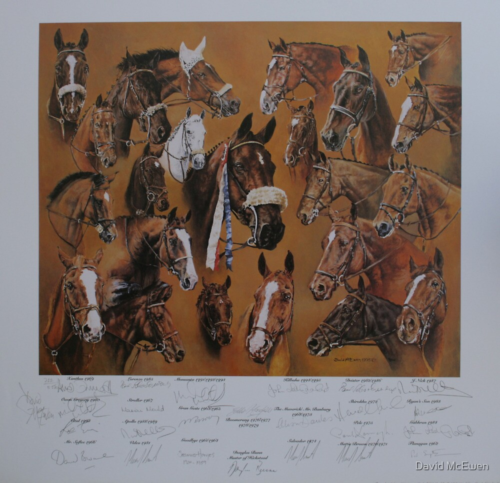 Hickstead Derby Winners 1961-1995 by David McEwen