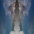 An Angel by TIMOTHY  POLICH