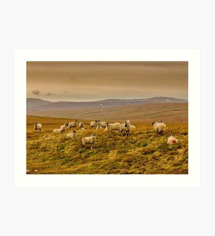 Winter on the Moors Art Print