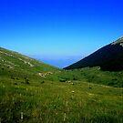Mountain Galicica by Kristina R.