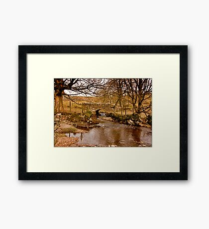 By a Babbling Brook Framed Print