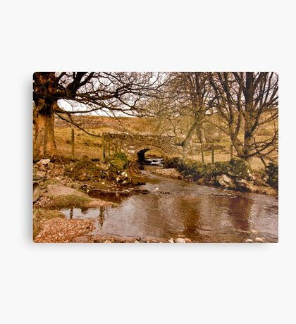 By a Babbling Brook Metal Print
