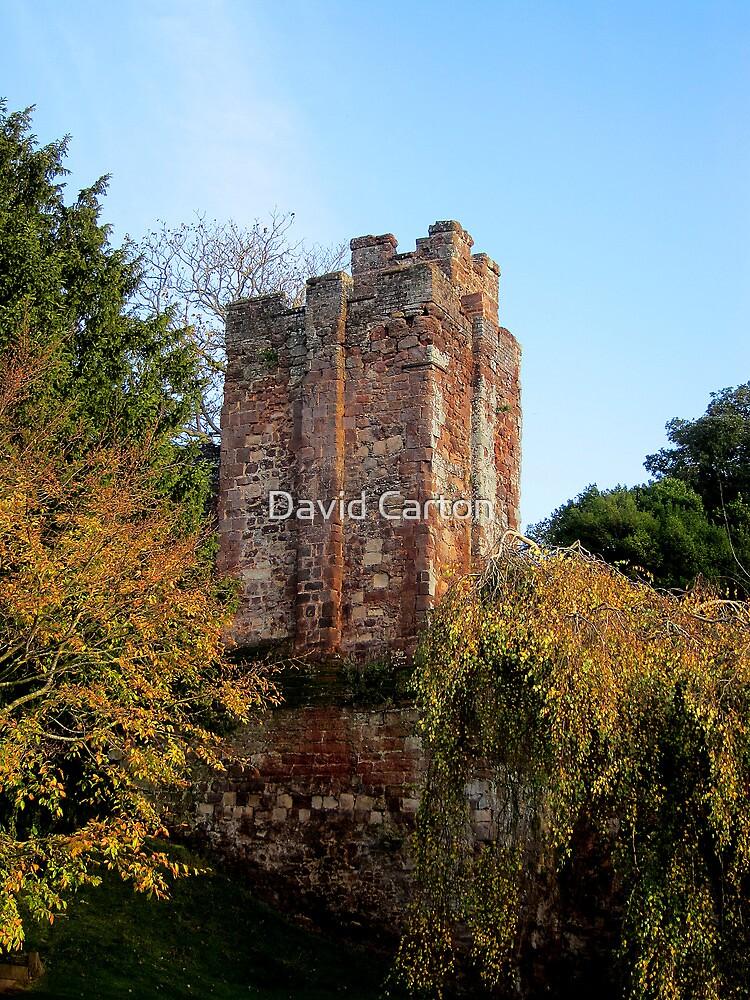 Athelstan's Tower, Exeter by David Carton