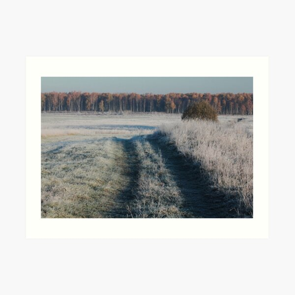 First frost and wild pathway in grassland Art Print
