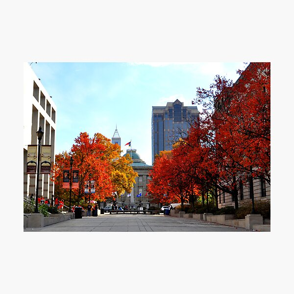 Autumn in Raleigh Photographic Print
