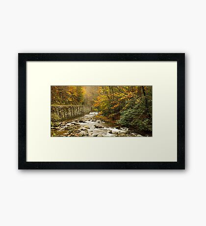 Laurel Creek II Framed Print