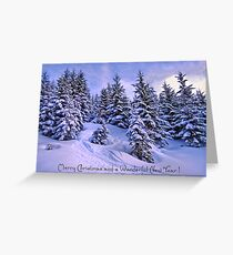 Merry Christmas and a Wonderful New Year Greeting Card