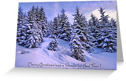 Merry Christmas and a Wonderful New Year by Sabine Jacobs
