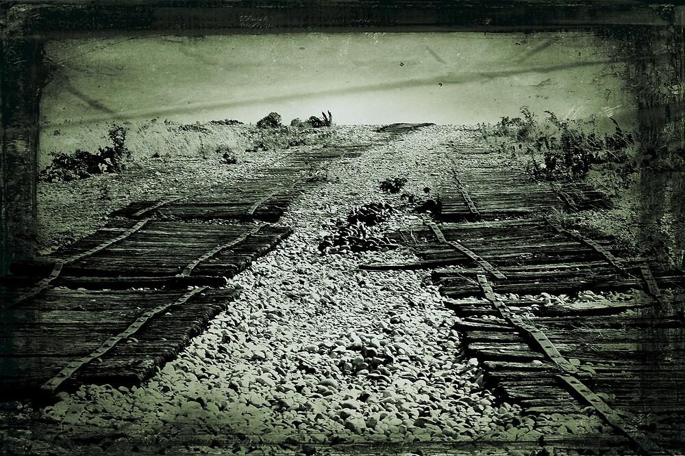 Shingle Tracks by Dave Godden