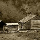 The Old Homestead II by Gary L   Suddath