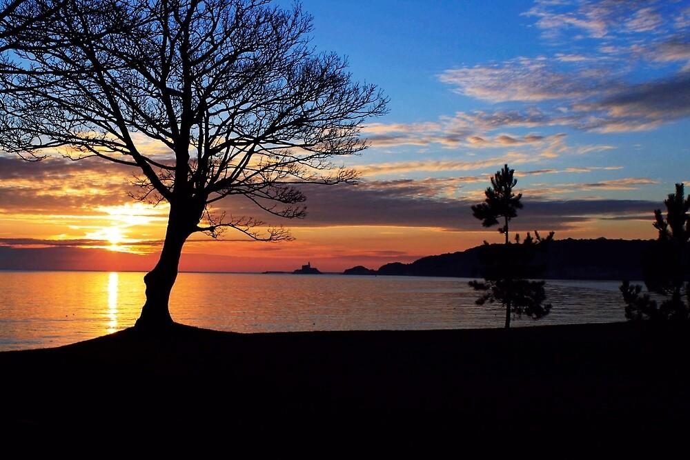 Bay sunrise by desertman