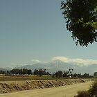 Snow In Southern California by Bearie23