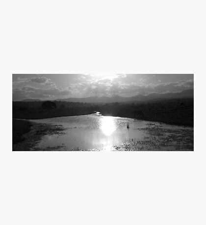 Sunset on the Pond Photographic Print