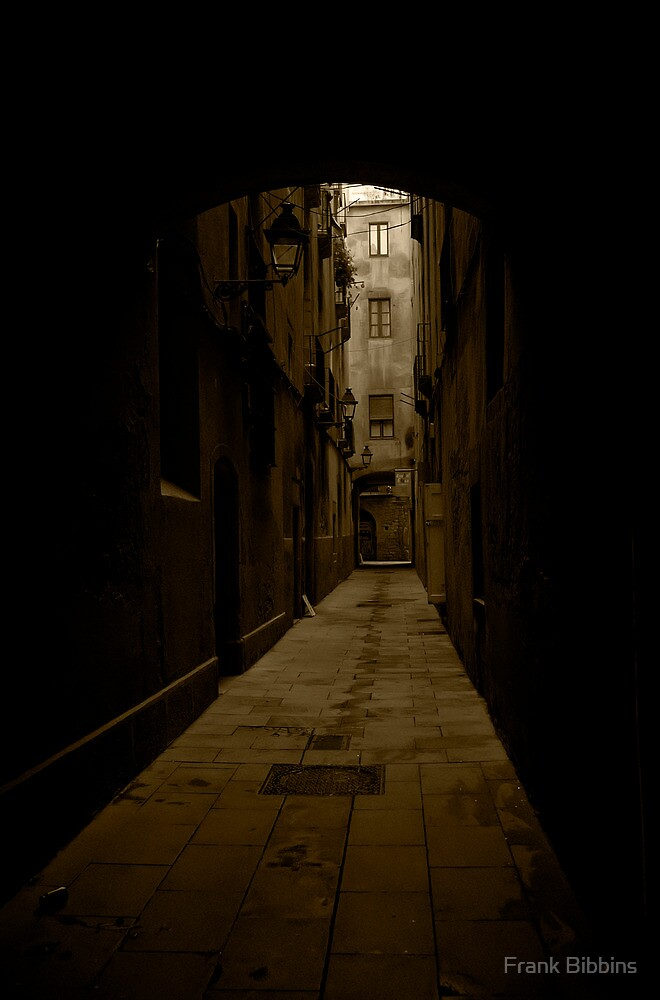 Barcelona Alley by Frank Bibbins