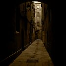 Barcelona Alley by Frank Bibbins