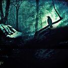 The Witness by noor786