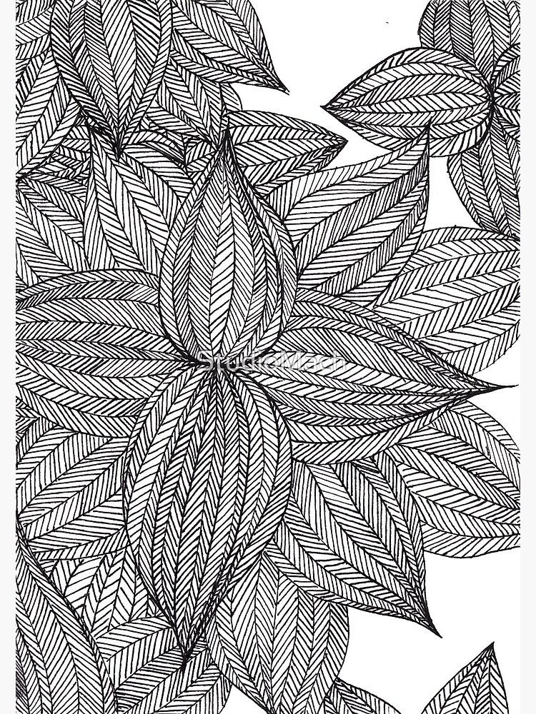 Botanical Wonders by StudioMach