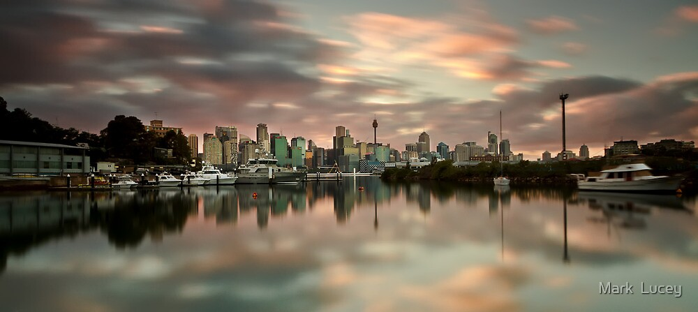 Shrouded in Pink by Mark  Lucey