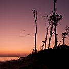 Time for Twilight at Red Beach by Barbara Burkhardt
