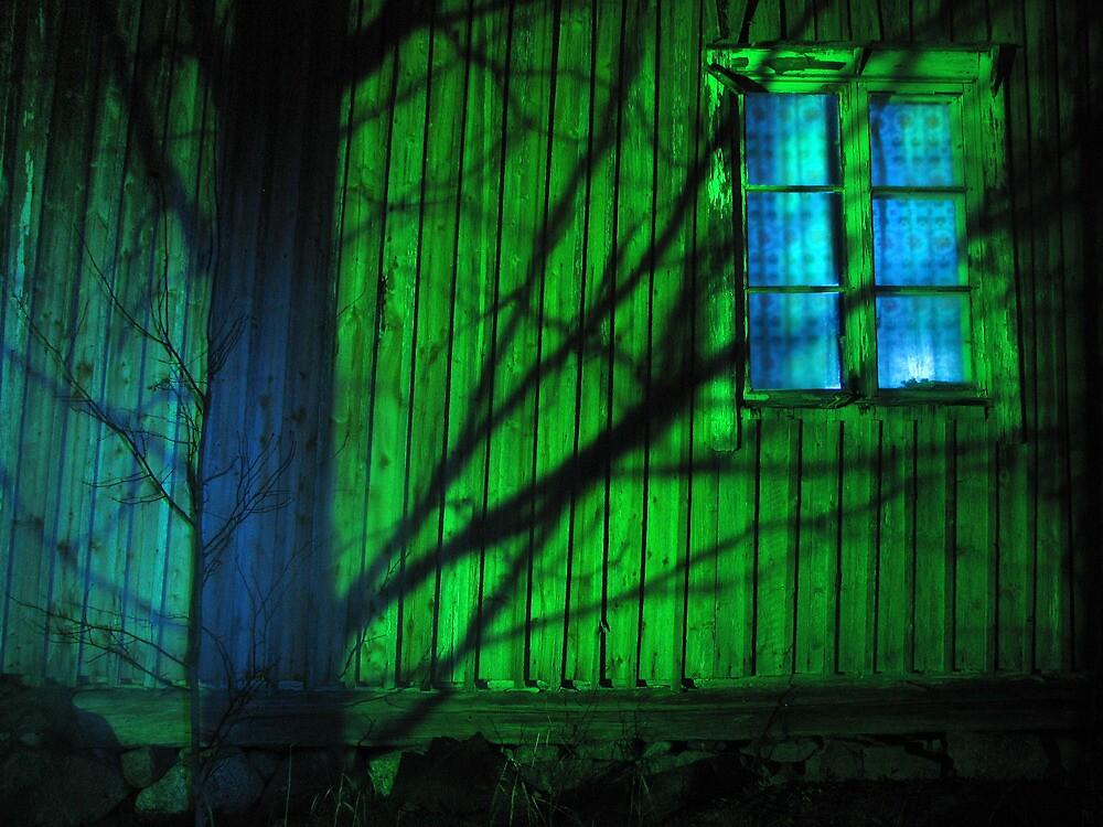 4.11.2011: Light in the Night III by Petri Volanen