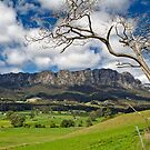 Rural Mount Roland by Peter Daalder
