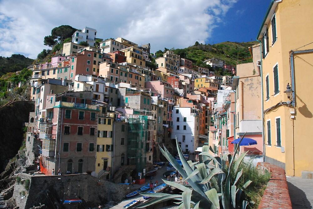 Riomaggiore, Cinque Terre by kieranmurphy
