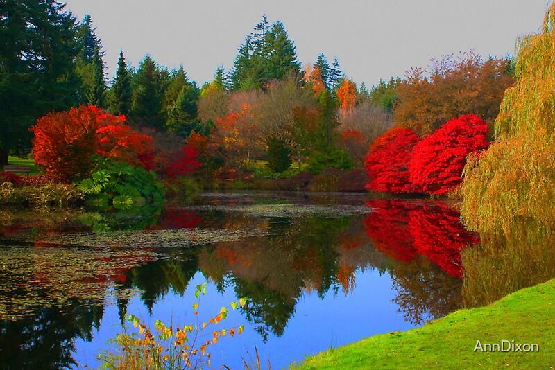 VanDusen Botanical Gardens Vancouver, BC Canada By AnnDixon