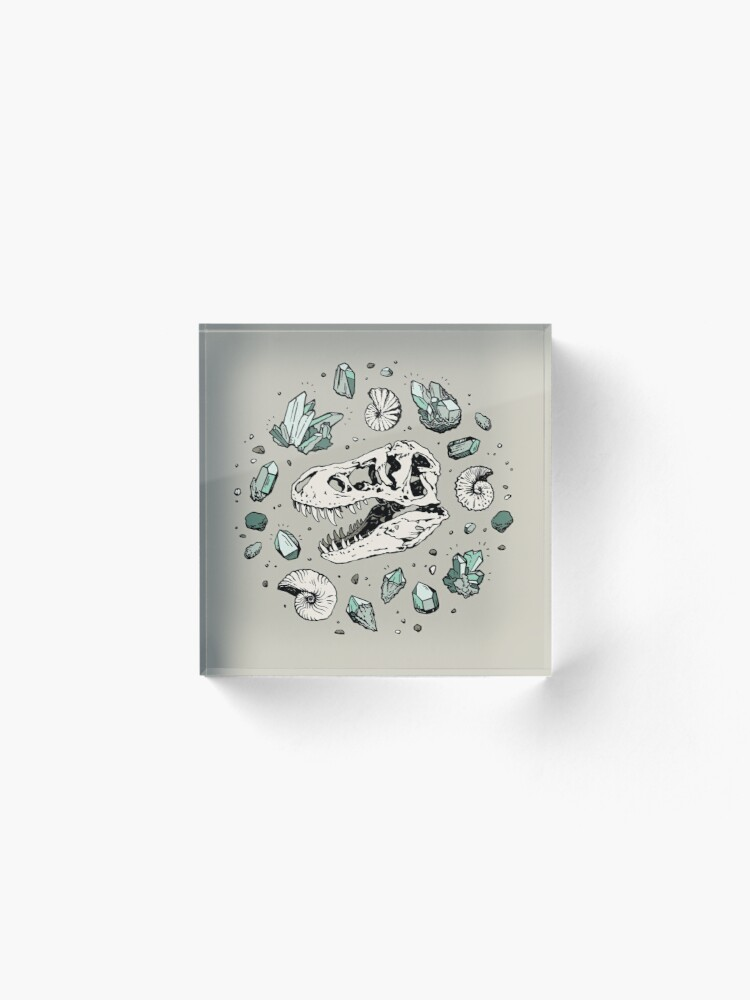 Alternate view of Geo-rex Vortex | Aquamarine | Dinosaur Skull Fossil Art Acrylic Block