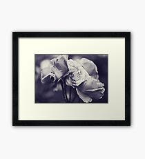 Wine, the night, and love Framed Print
