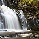 The Catlin's Purakaunui Falls by Rodel Joselito B.  Manabat