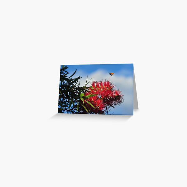 Bee on a mission Greeting Card