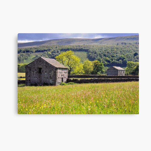 Summer Meadow, Wharfedale - The Yorkshire Dales Canvas Print