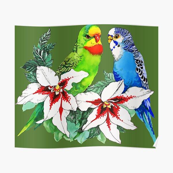 Love Birds Logo Design-t-shirt Poster