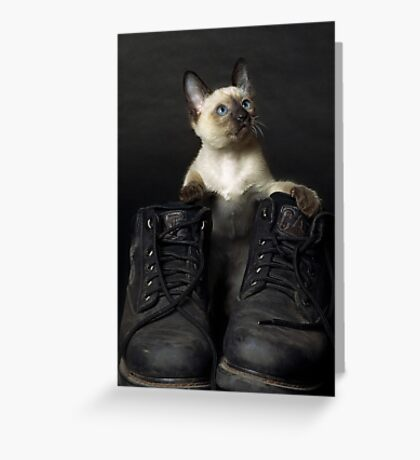 These Boots are Made for Scratchin' Greeting Card