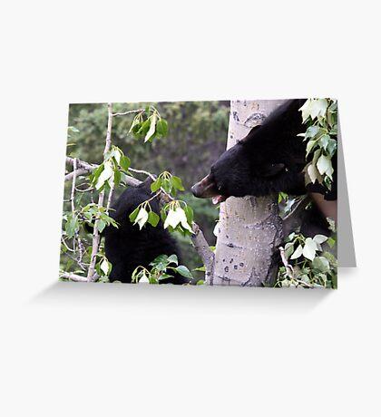 My Tree !!! Greeting Card