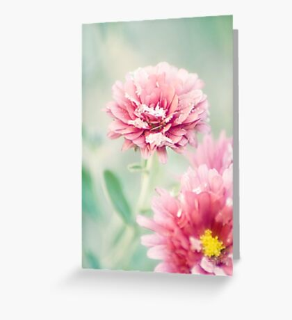 Soft Chill Greeting Card