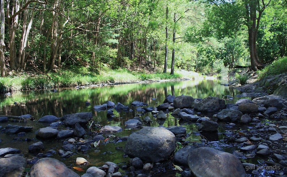 currumbin valley creek ... by gail woodbury