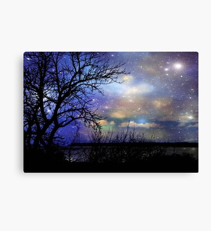 Night Fall © Canvas Print