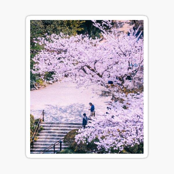 Japon - Stairs under Sakura Sticker