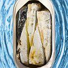 Fishy  by mspfoto